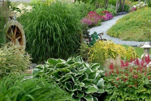 Les jardins vivaces de fernand westbury canton de for Plantes vivaces pour jardin anglais