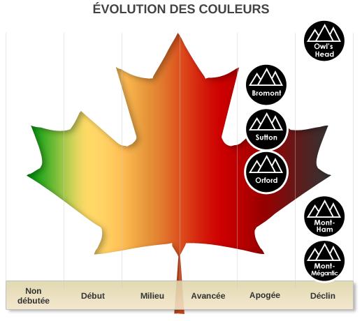 Évolution des couleurs