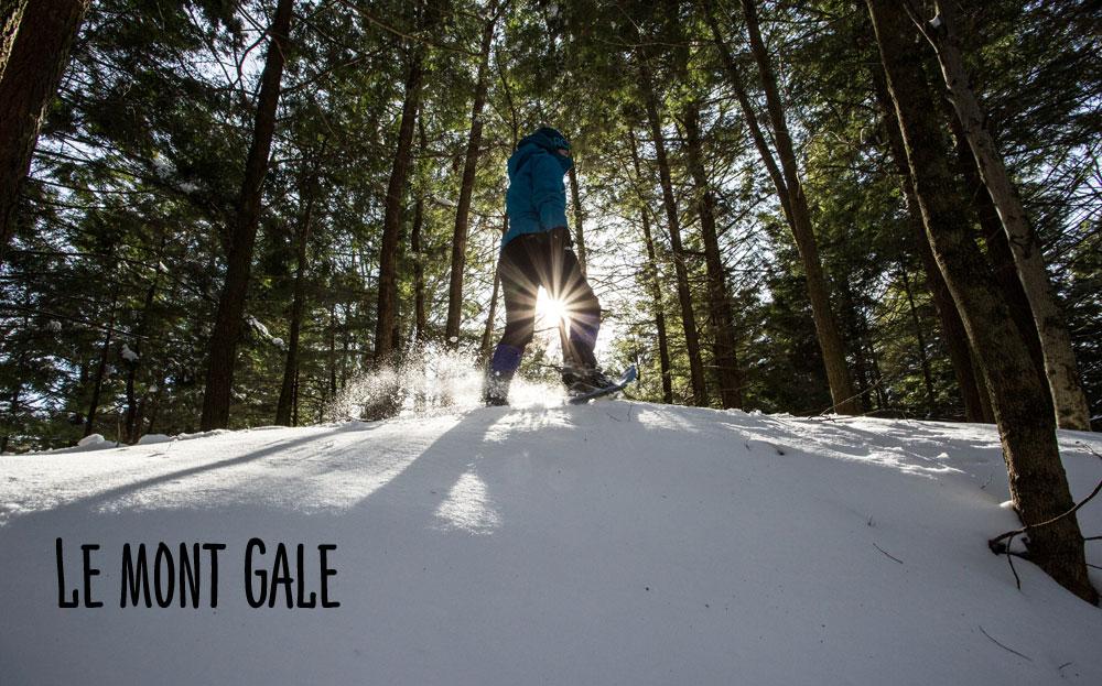 Le Mont Gale